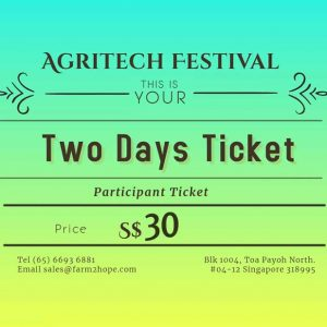 Two Days Ticket